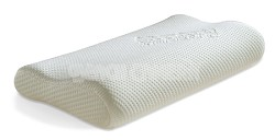 Ecologically Friendly Organic Extra-Large Pillow