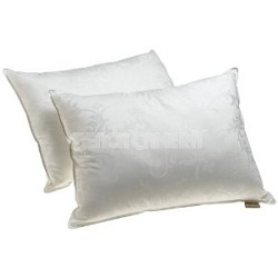 Set of two 100 Percent Gel Filled Pillows