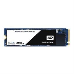 WDS256G1X0C