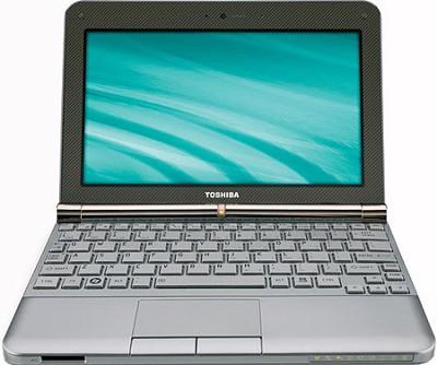 NB205-N330BN 10.1 inch Mini Notebook PC - Sable Brown