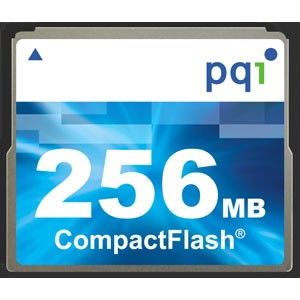 Closeout !!! 256MB Compact Flash Memory Card ( A Necessity)