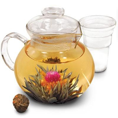 Primula Glass Teapot w/Infuser