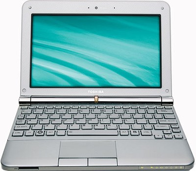 NB205-N330WH 10.1 inch Mini Notebook PC - Frost White
