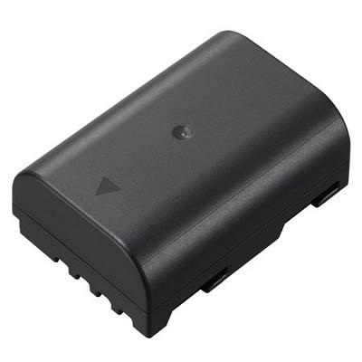 AC/DC Rapid battery for Panasonic BLF19