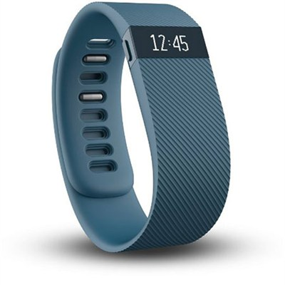 Charge Wireless Activity + Sleep Tracker Wristband - Slate - Large - OPEN BOX