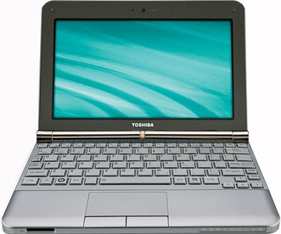 NB205-N325BN 10.1 inch Mini Notebook PC - Sable Brown