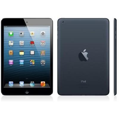 iPad Mini with Wi-Fi 16GB - Black, Refurbished