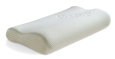 Ecologically Friendly Organic Small Pillow