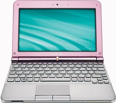 NB205-N330PK 10.1 inch Mini Notebook PC - Posh Pink
