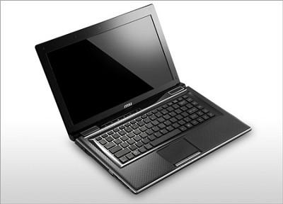FX420-002US 14-Inch Laptop - Black Intel Core i3-2310M