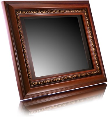 ADMPF110 -10.-inch  Digital Photo Frame w/ 256MB Memory, Wireless Remote (Brown)