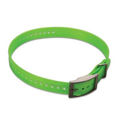 1-inch Dog Collar Strap, Green 010-11892-06