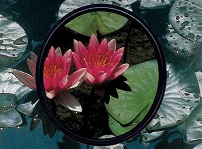 58mm Circular Polarizer Glass Filter SHPMC - 705840