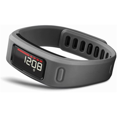 Vivofit Bluetooth Fitness Band Slate - 010-01225-05