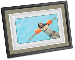 EasyShare M1020 10` Digital Picture Frame with Home Decor Kit