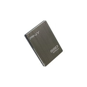 P-SSD2S128GM-CT01RB Solid State Drive